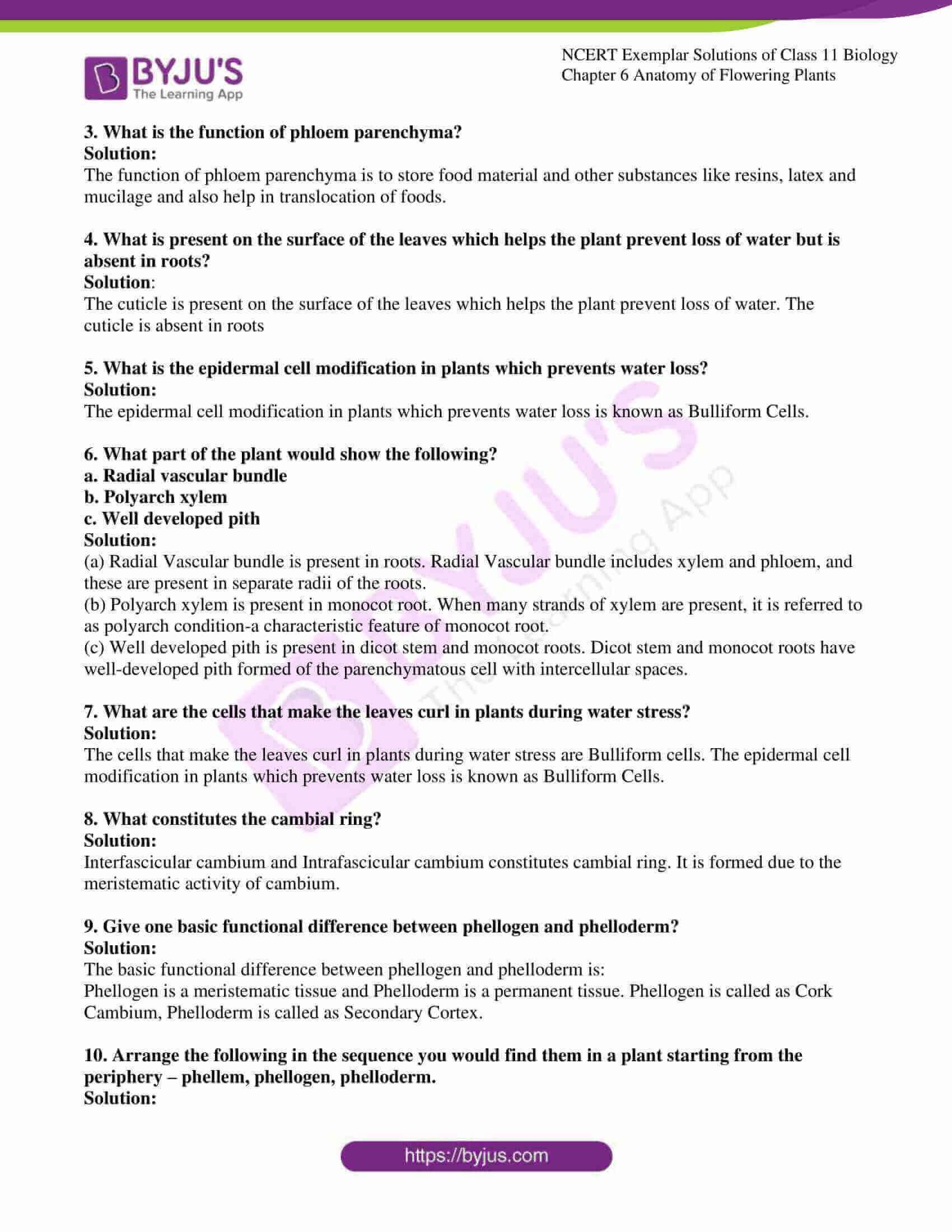 ncert exemplar solutions class 11 biology chapter 6 05