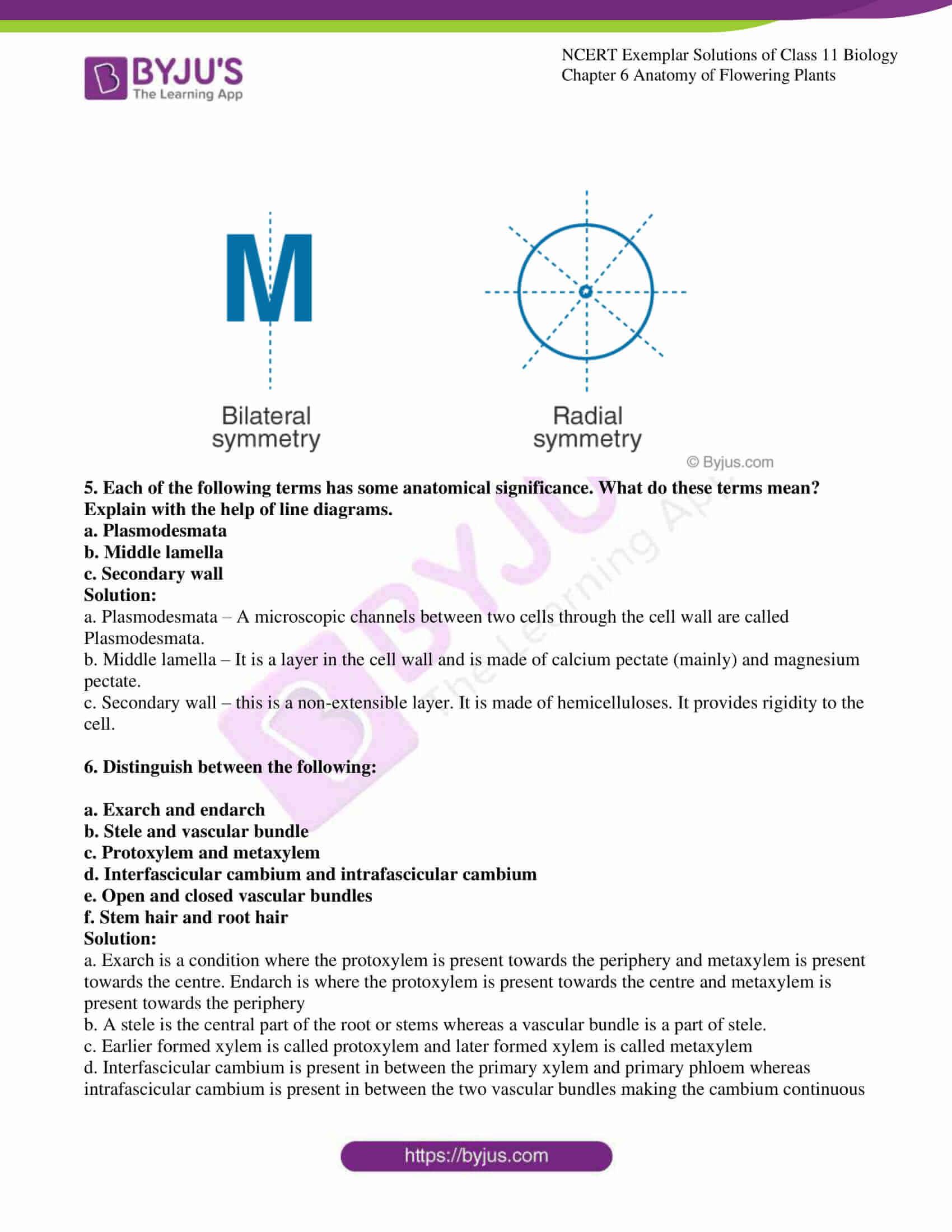 ncert exemplar solutions class 11 biology chapter 6 11