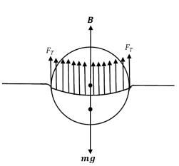 JEE Main 2020 Jan Shift 2 Physics Solved Paper