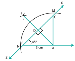 RD Sharma Solutions for Class 7 Maths Chapter 17 Constructions Image 17