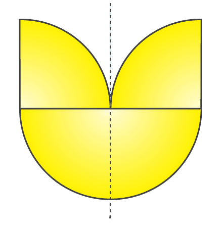 RD Sharma Solutions for Class 7 Maths Chapter 18 Symmetry Image 12