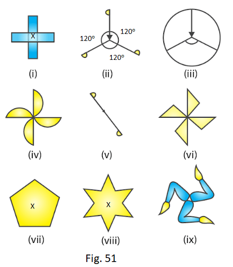 RD Sharma Solutions for Class 7 Maths Chapter 18 Symmetry Image 26