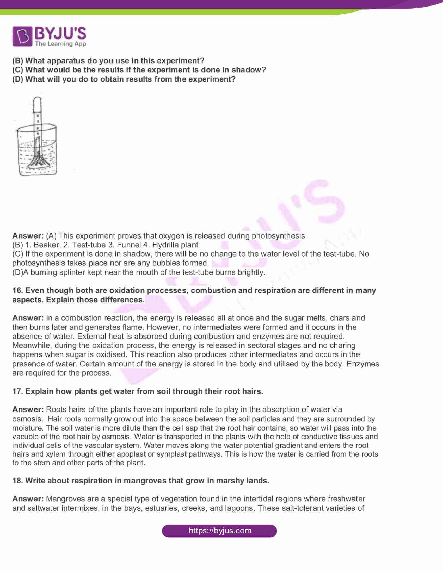 AP Board Class 10 Science Paper 2 2015 Question Paper with Solutions 4