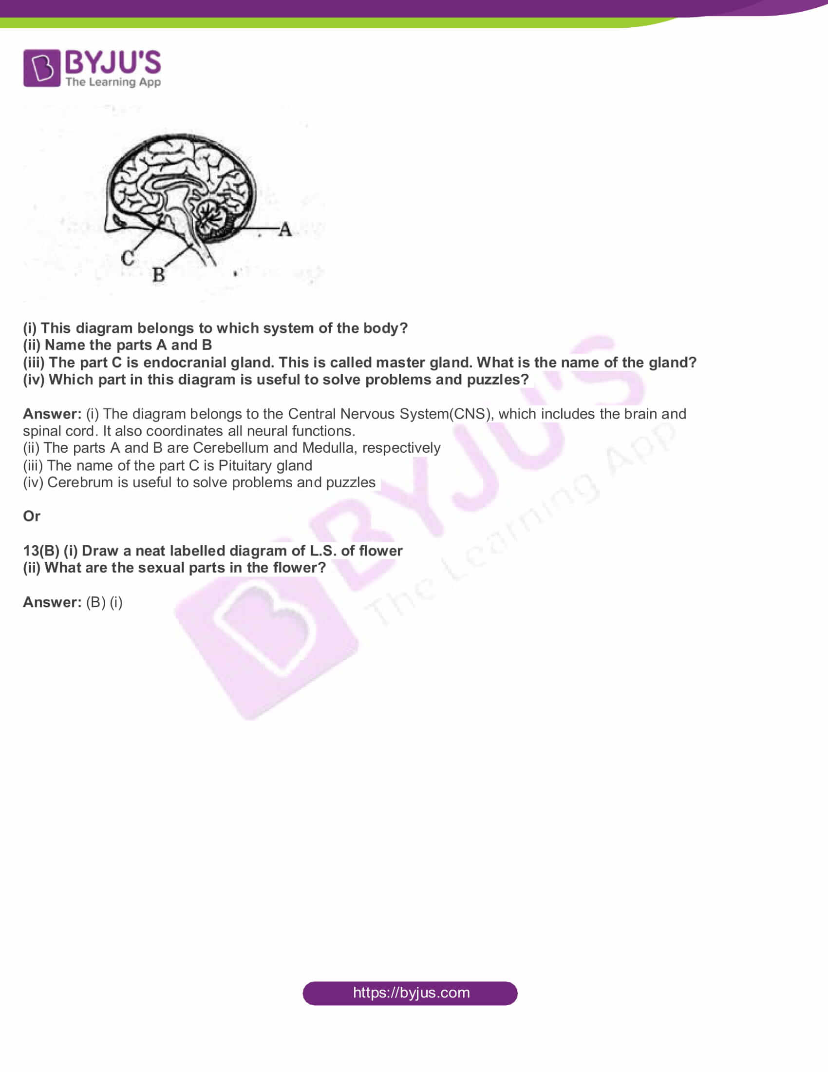 AP Board Class 10 Science Paper 2 2017 Question Paper with Solutions 07