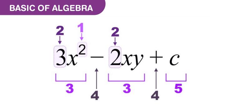 Basics Of Algebra