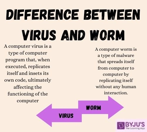 Difference Between Virus and Worm - Computer Virus vs Computer Worm