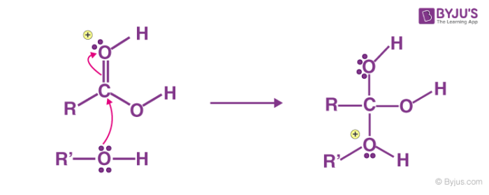 Fischer Esterification Mechanism Step 2