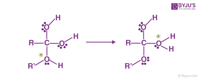 Fischer Esterification Mechanism Step 3