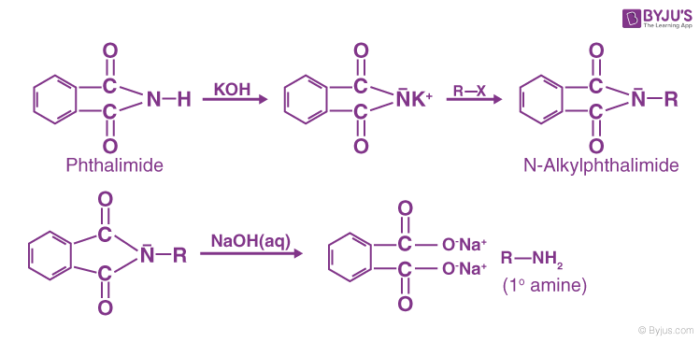 Gabriel Phthalimide Synthesis Mechanism