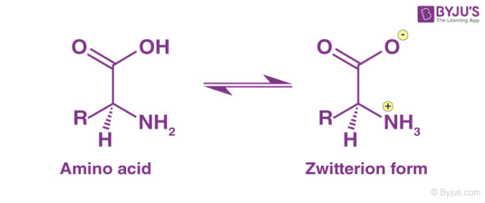 Zwitterion form of an amino acid