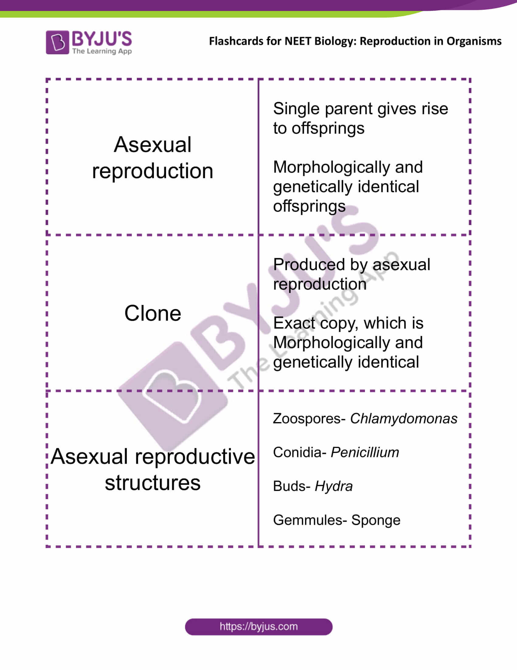 Flashcards for NEET Biology for Reproduction in Organisms 1