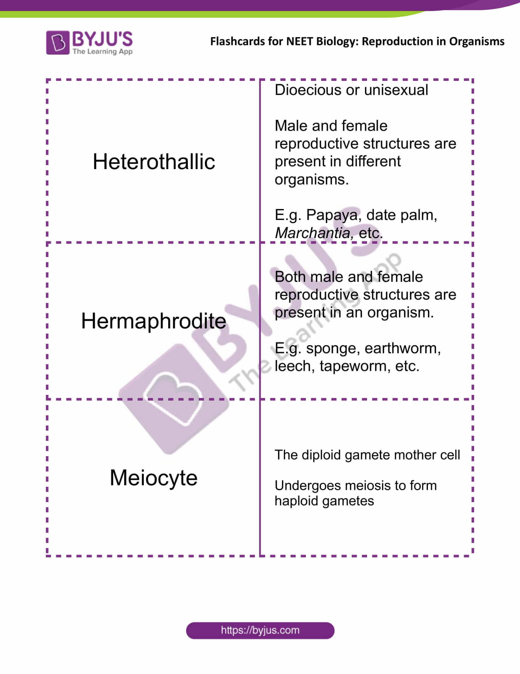 Flashcards for NEET Biology for Reproduction in Organisms 6