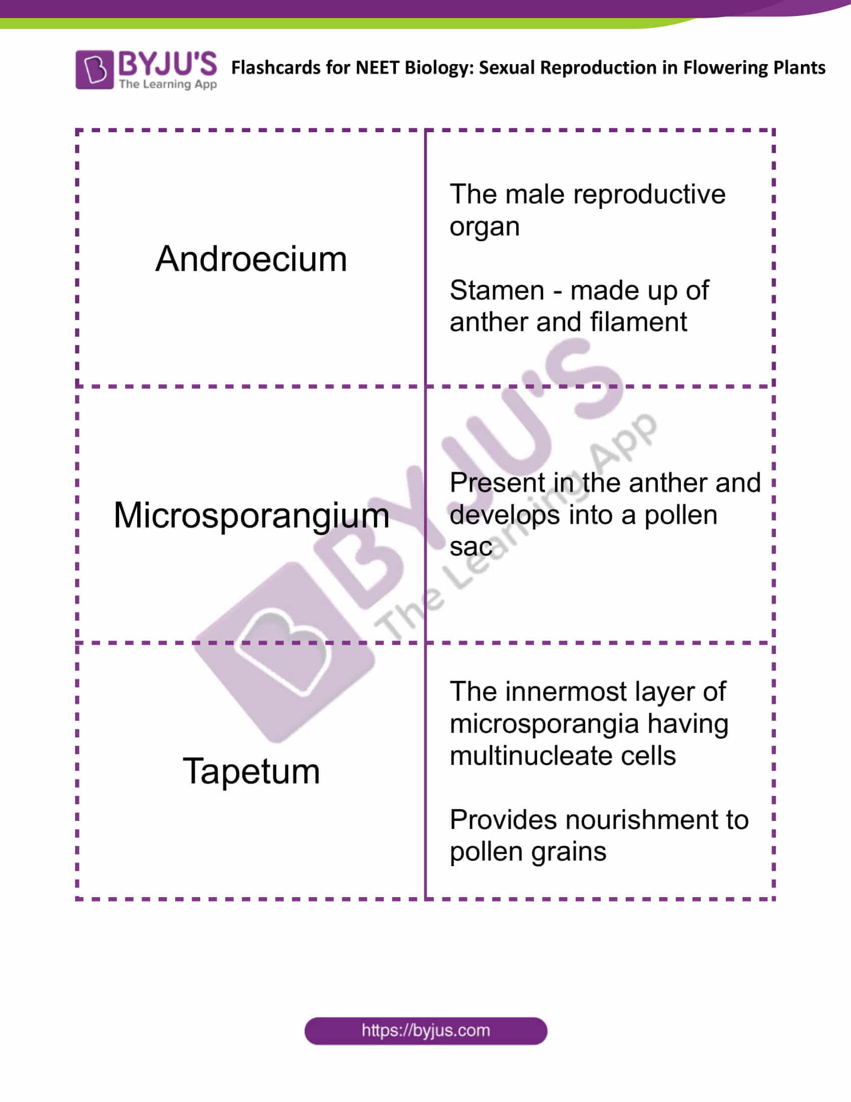 Sexual Reproduction in Flowering Plants 1
