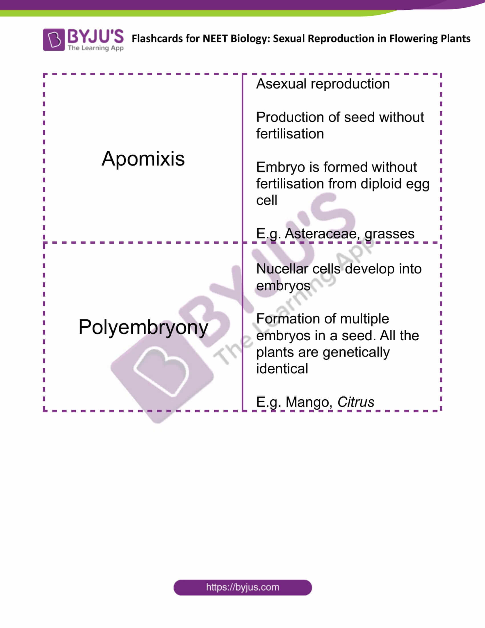 Sexual Reproduction in Flowering Plants 11