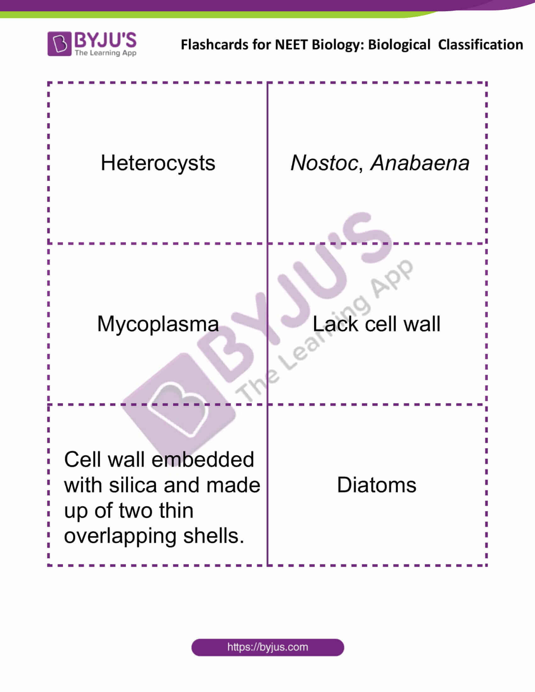 Flashcards for NEET Biological Classification 2