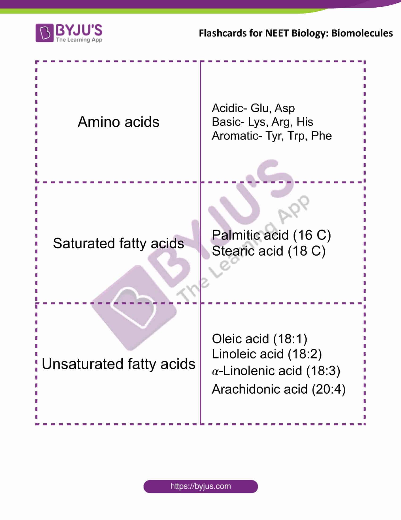 flashcards for neet biology biomolecules 1