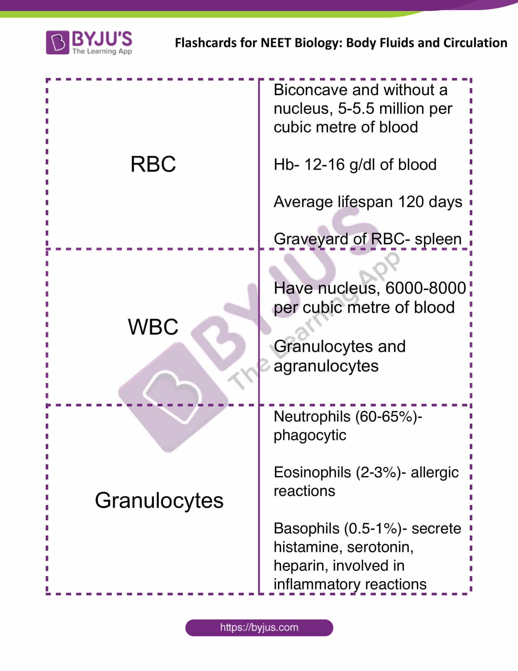 flashcards for neet biology body fluids and circulation 02