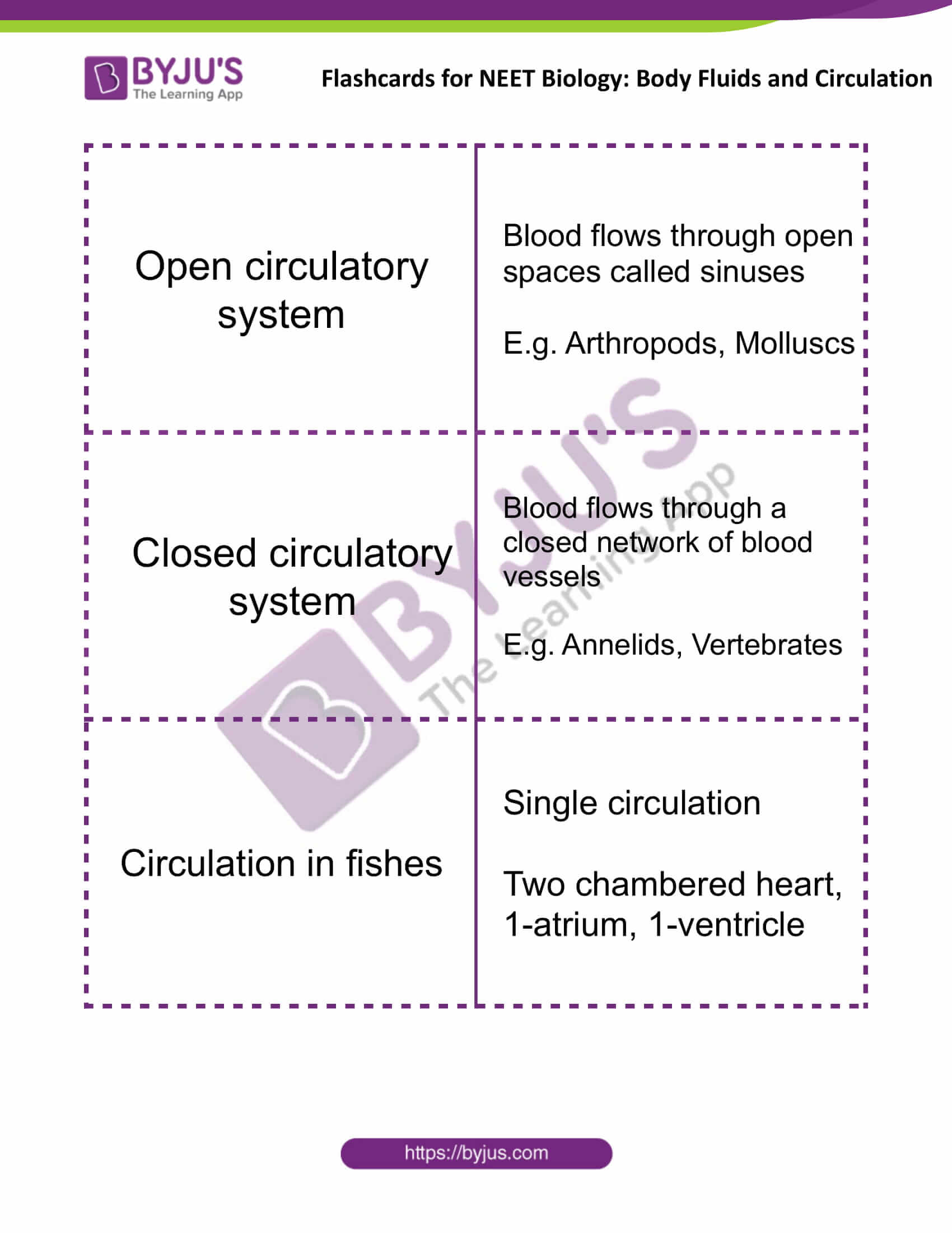 flashcards for neet biology body fluids and circulation 04
