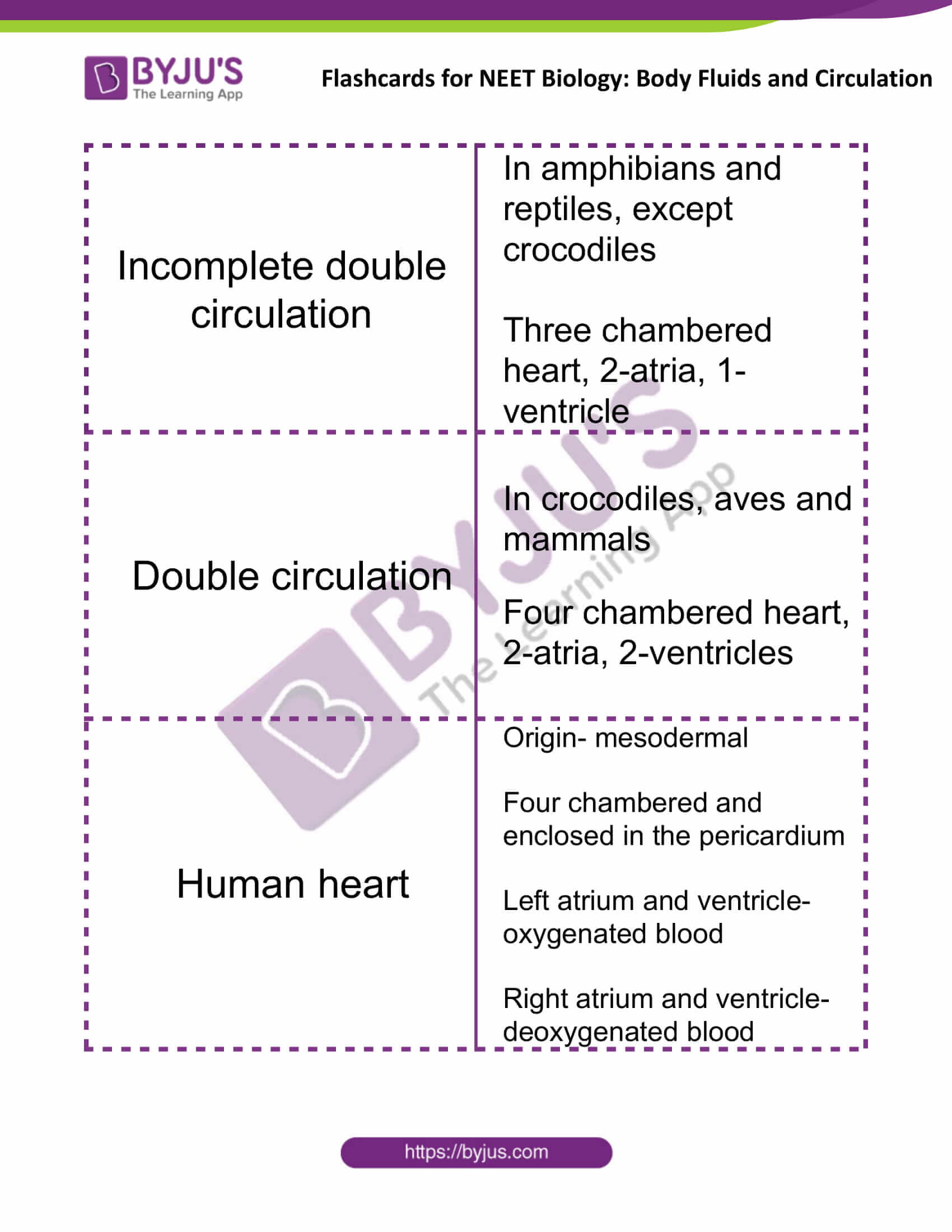 flashcards for neet biology body fluids and circulation 05
