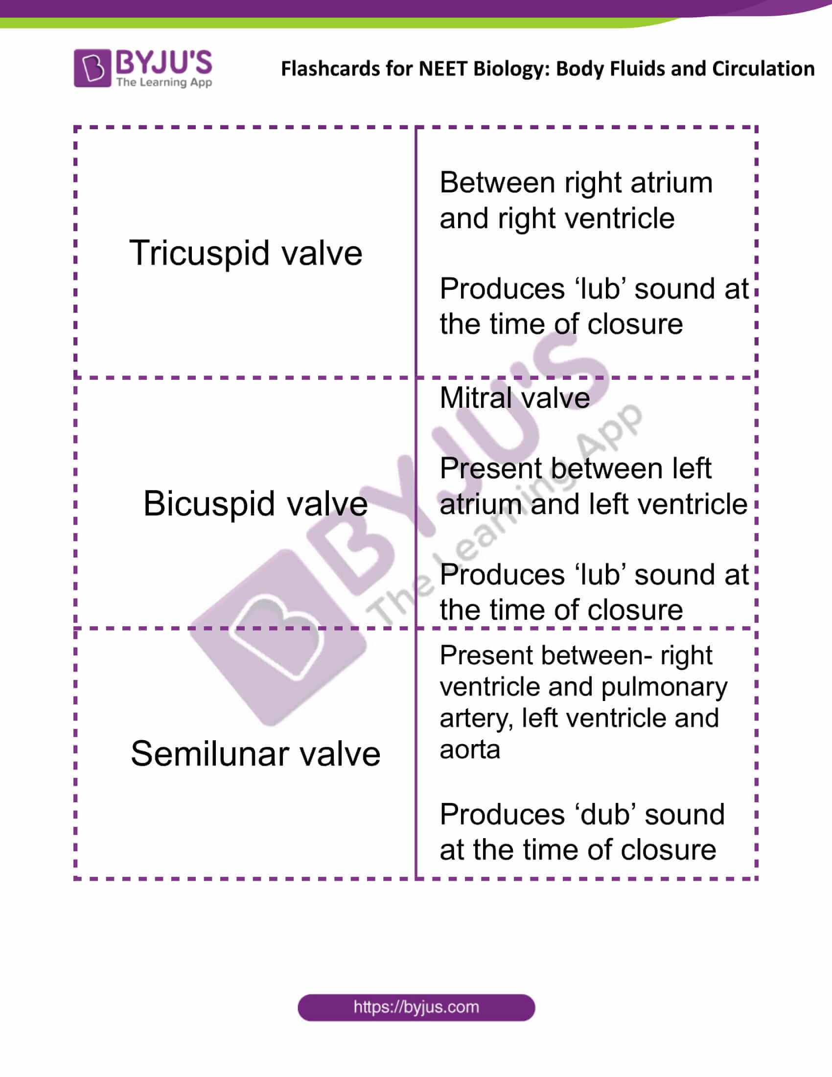 flashcards for neet biology body fluids and circulation 06