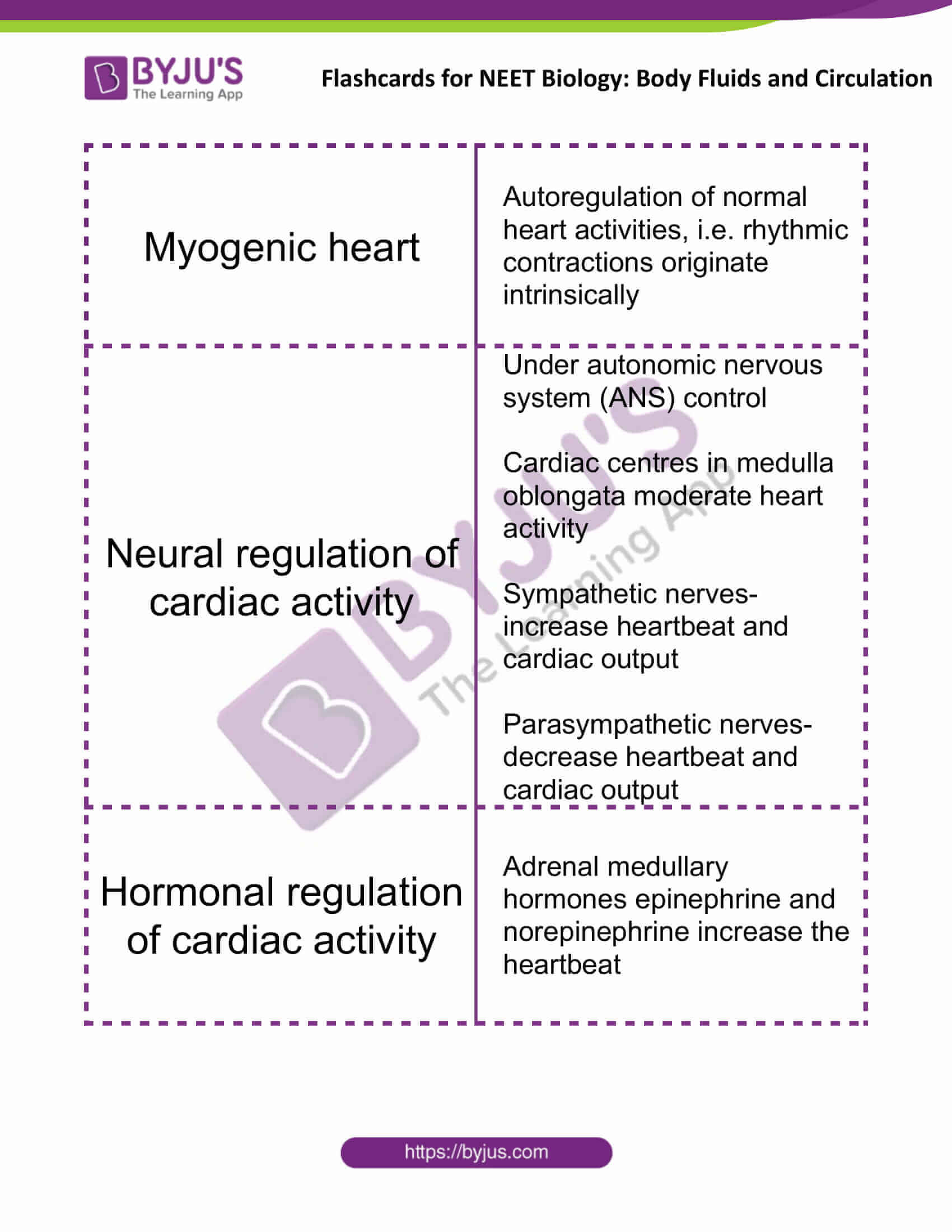 flashcards for neet biology body fluids and circulation 11