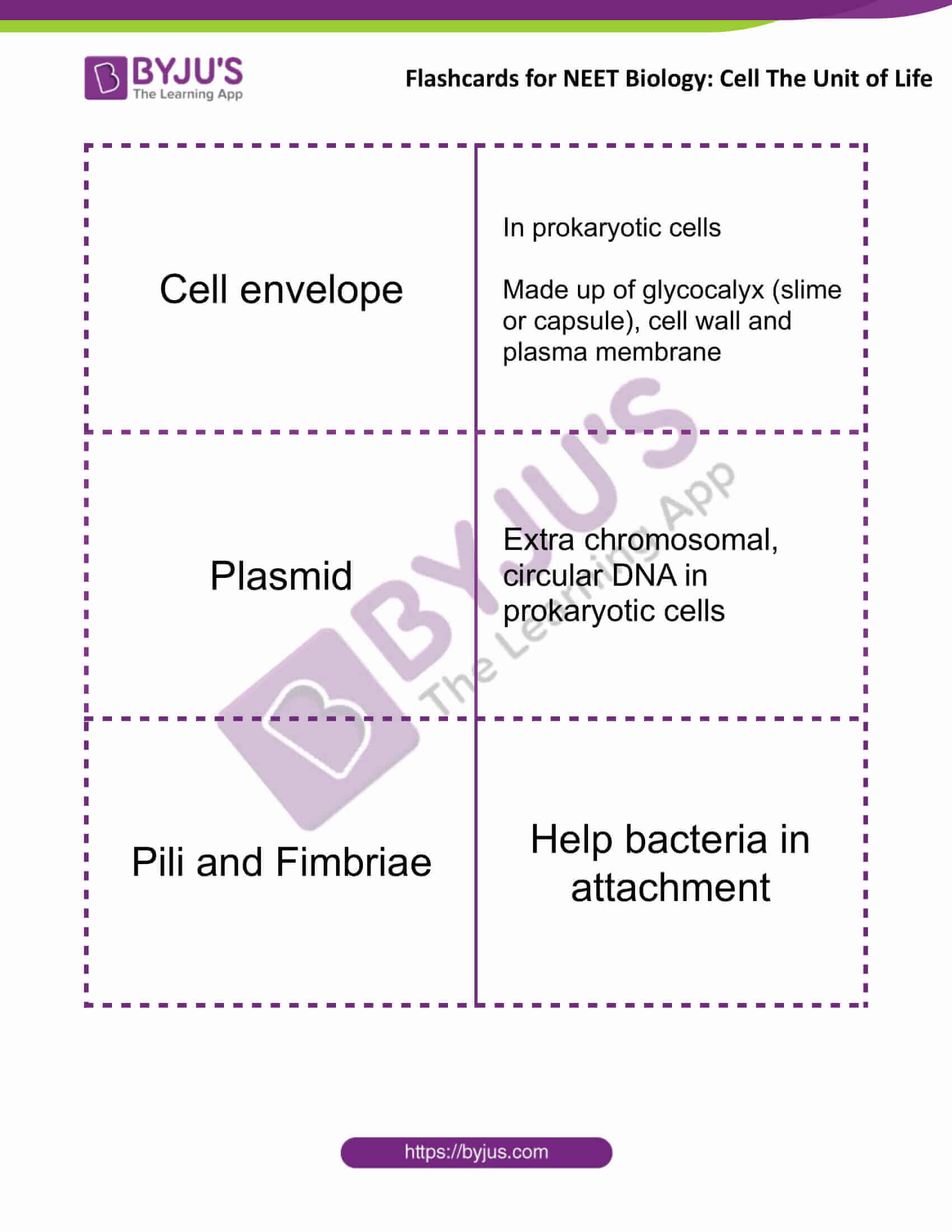 flashcards for neet biology cell the unit of life 3