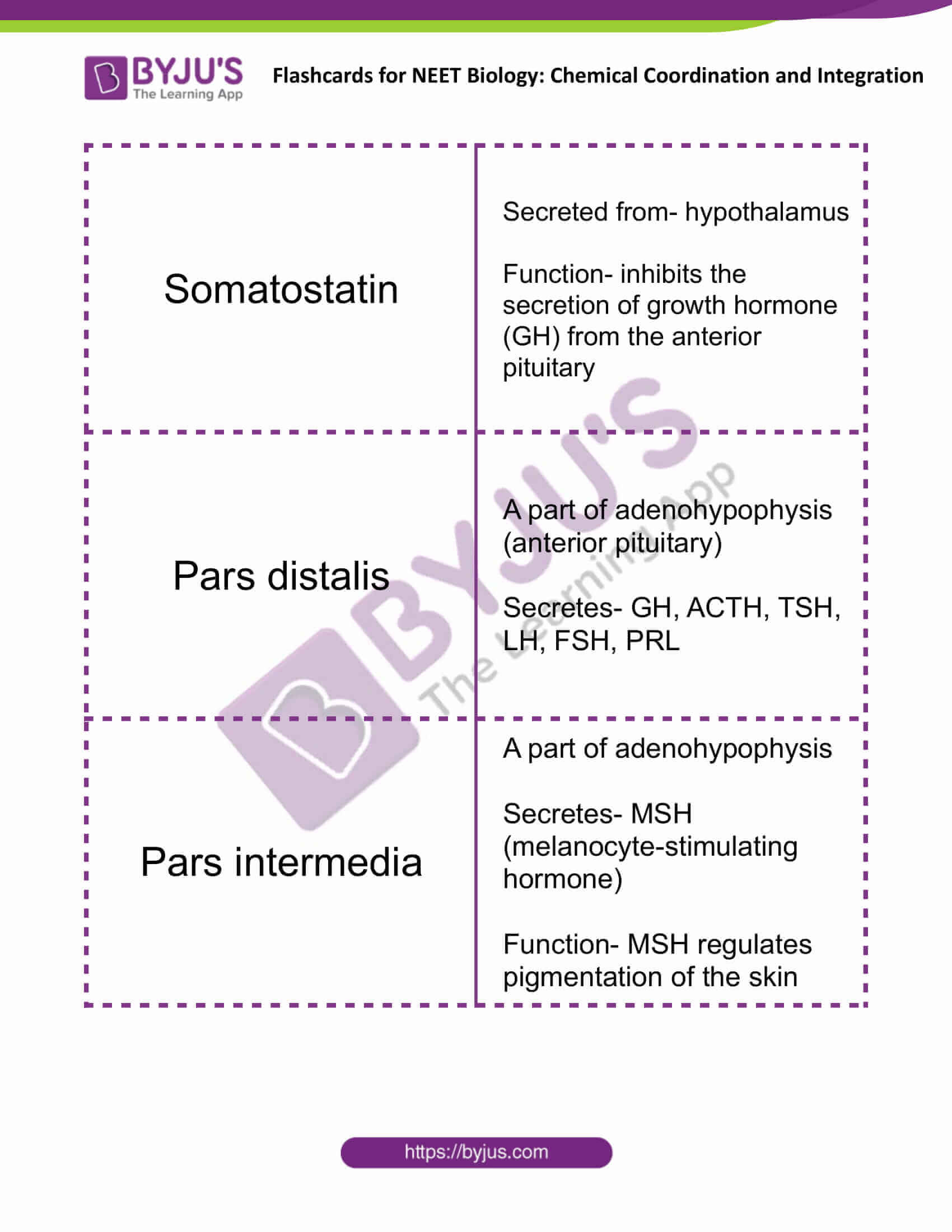 flashcards for neet biology chemical coordination and integration 02
