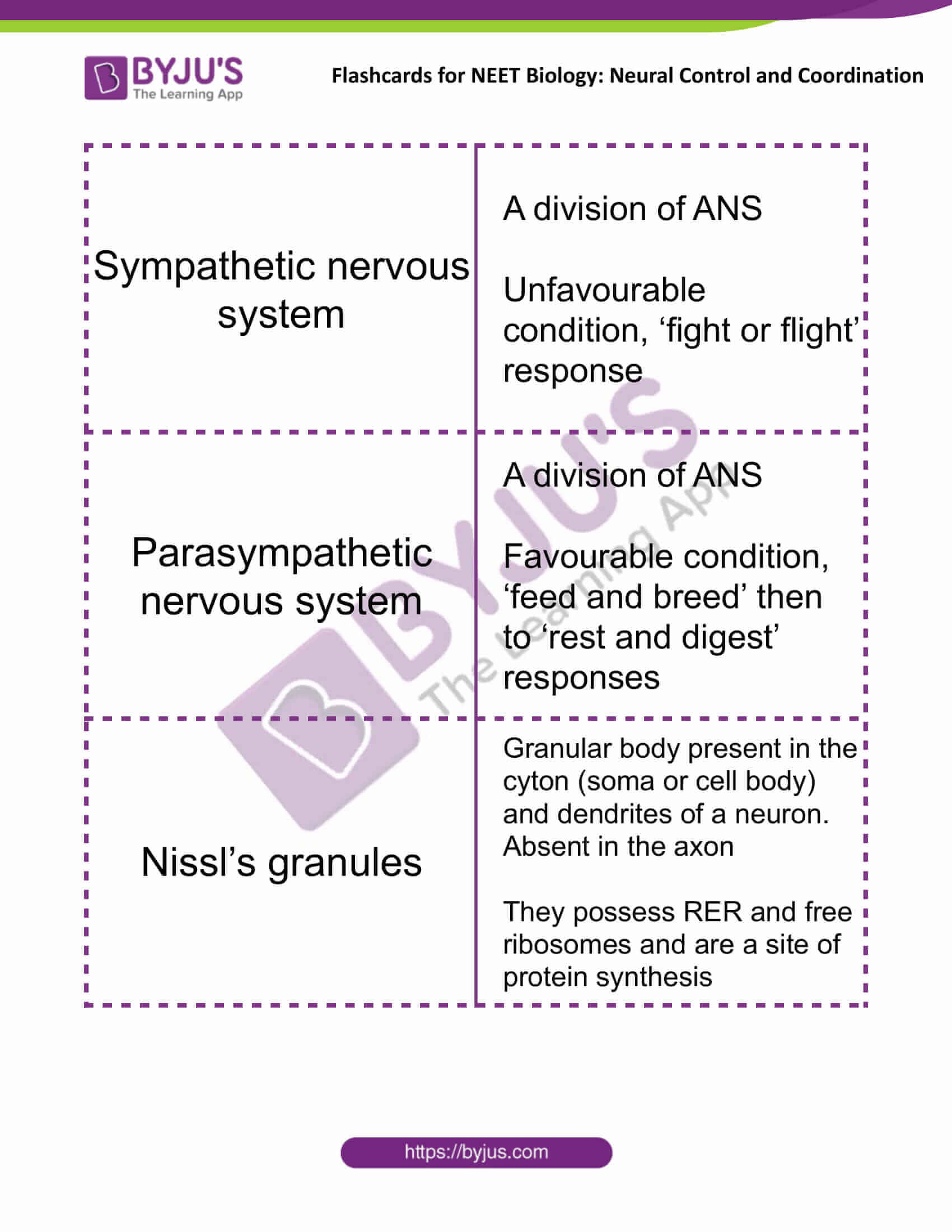 flashcards for neet biology neural control and coordination 03