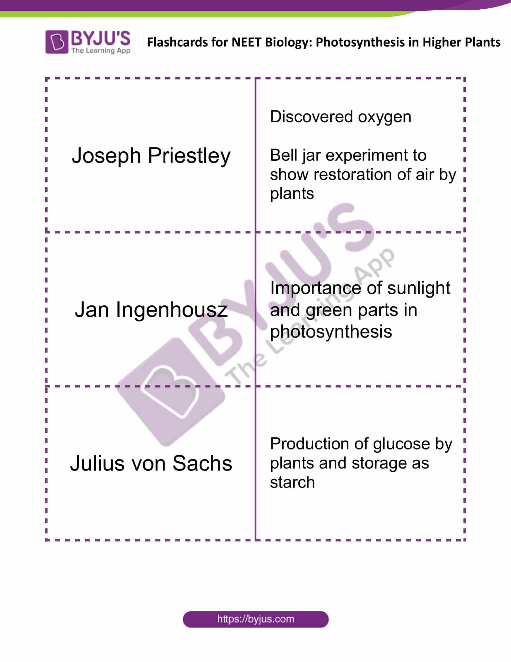 flashcards for neet biology photosynthesis in higher plants 1