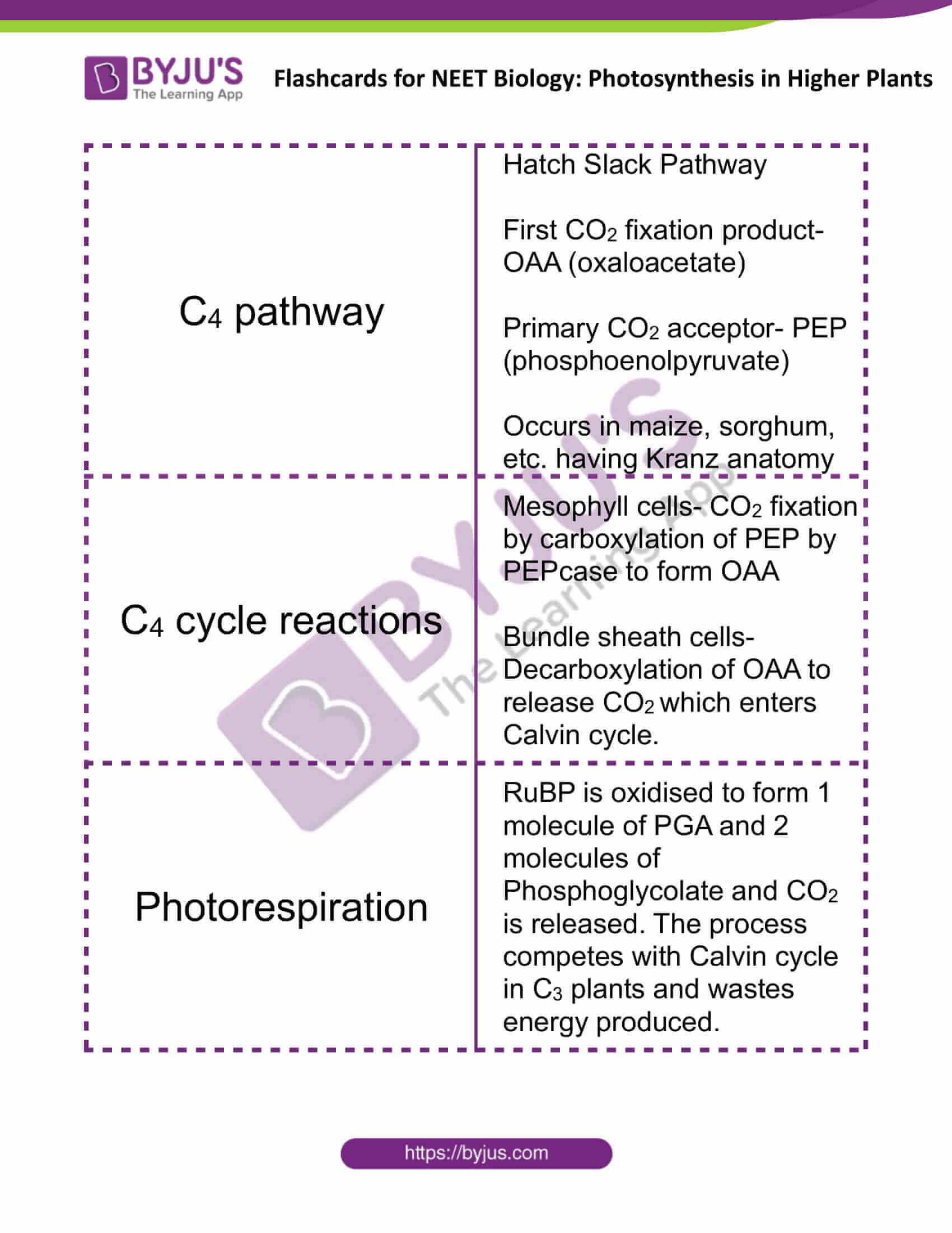 flashcards for neet biology photosynthesis in higher plants 7