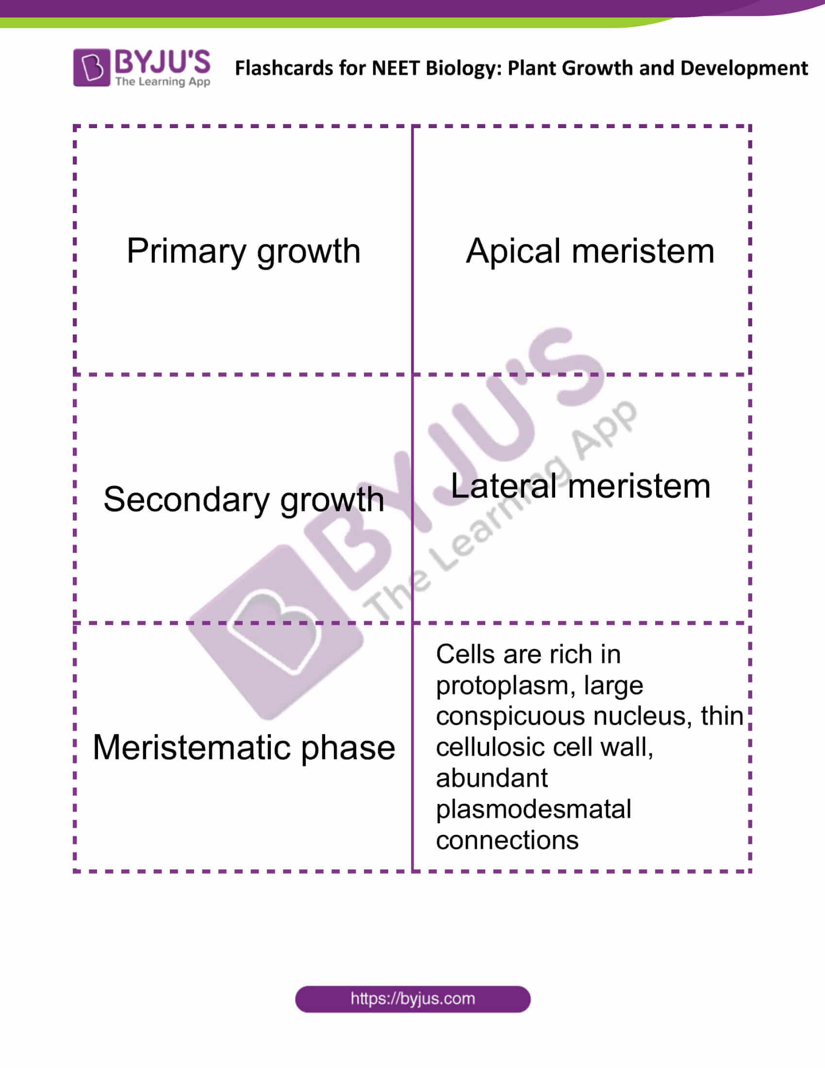 flashcards for neet biology plant growth and development 1
