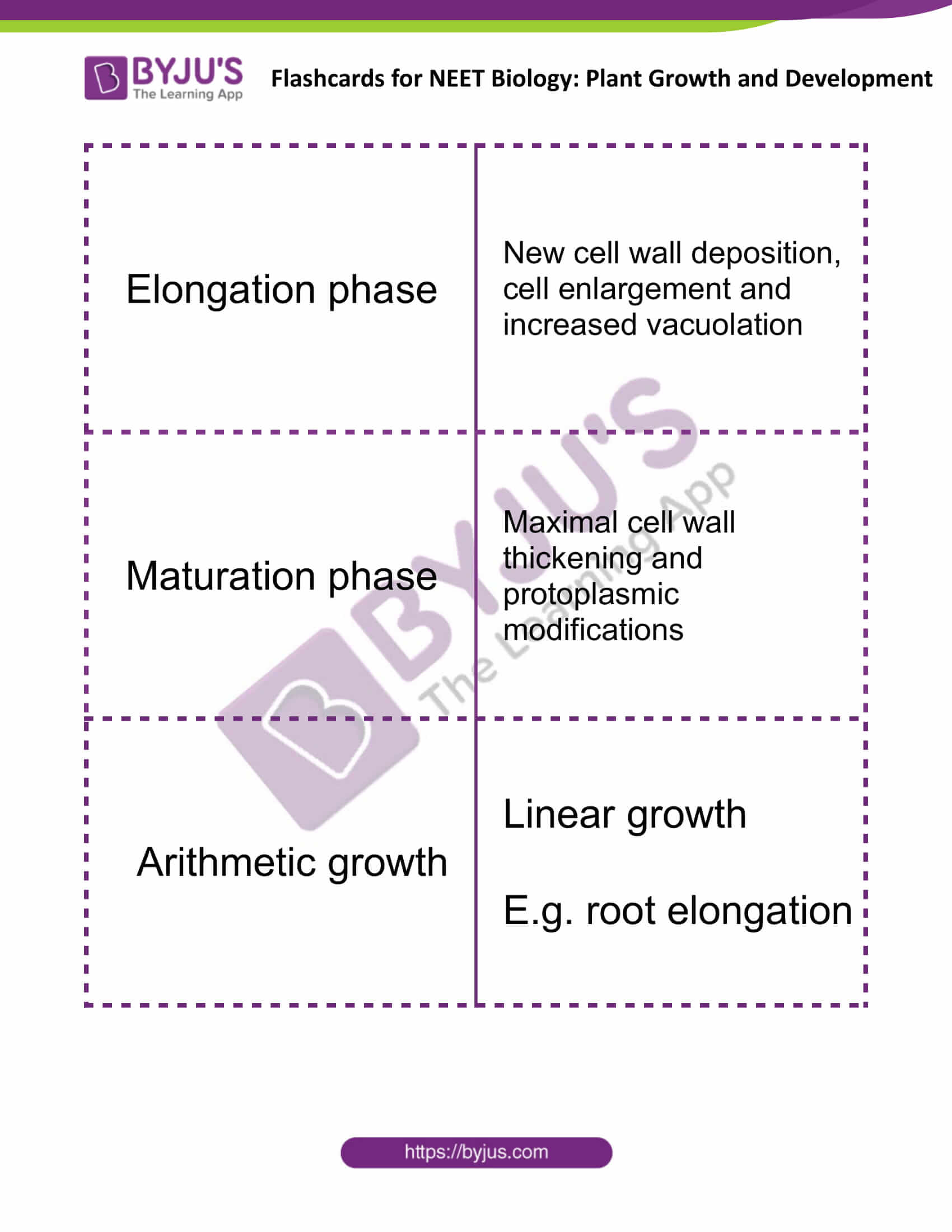flashcards for neet biology plant growth and development 2