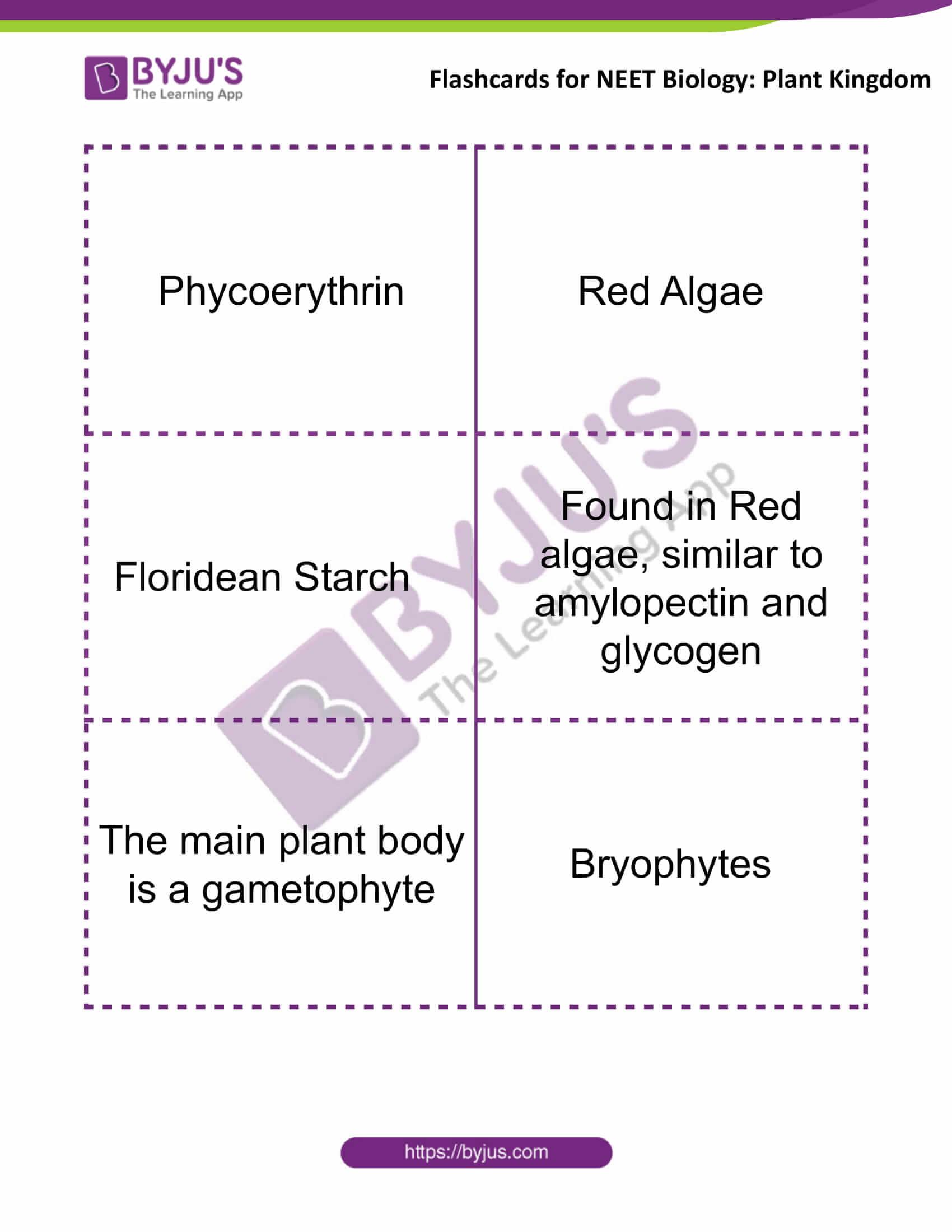 flashcards for neet biology plant kingdom 4