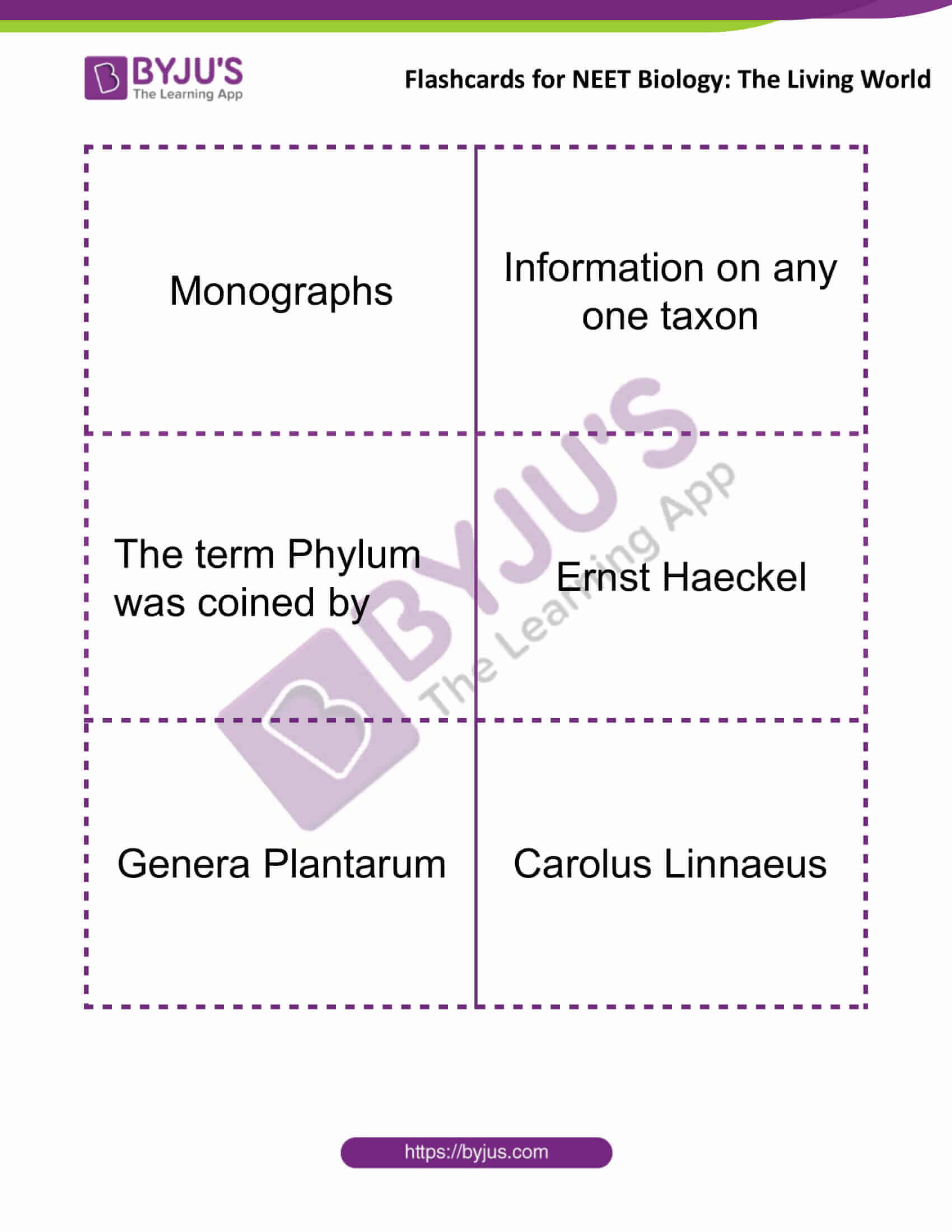 Flashcards for Bio NEET The Living World 4
