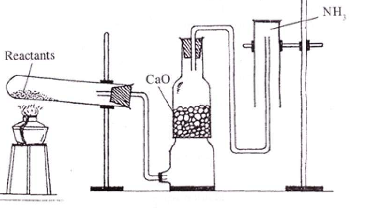 KBPE Class 10 Chemistry 2015 Previous Year Question Paper Question  11