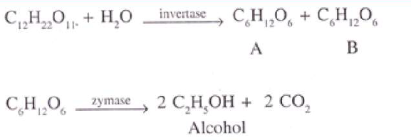 KBPE Class 10 Chemistry 2015 Previous Year Question Paper Question  13