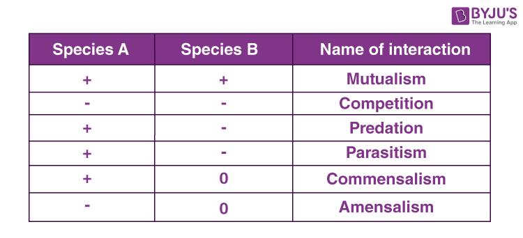 KCET Solutions Paper 2019 Biology