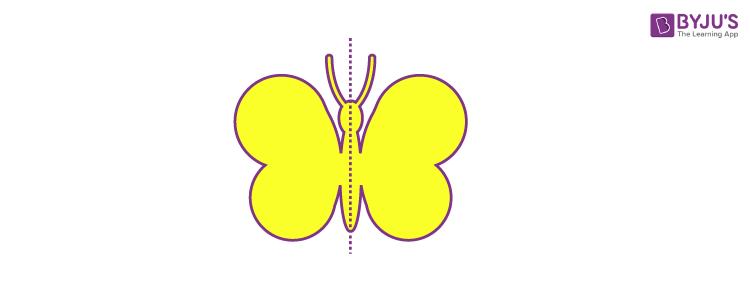 Reflexive symmetry