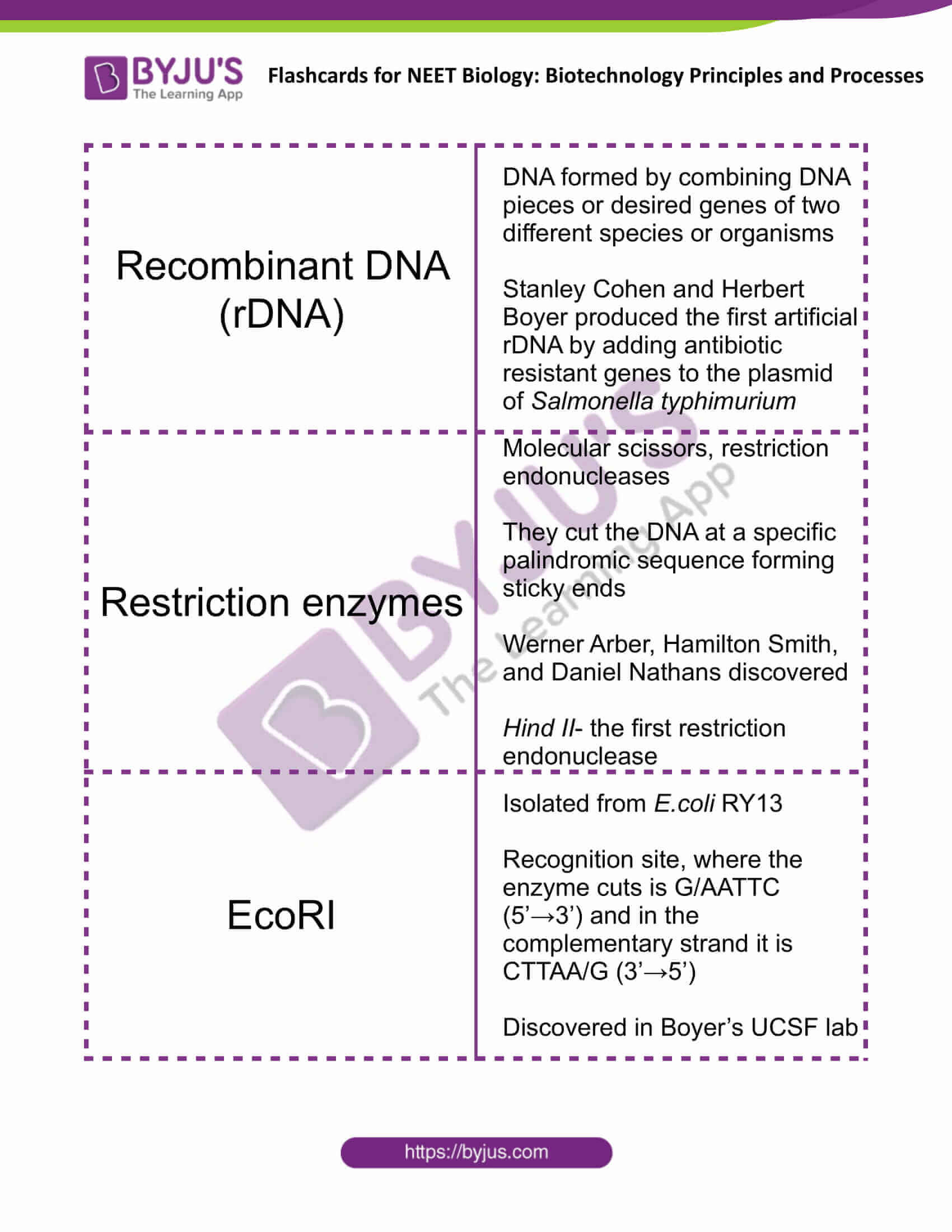 class 12 biotechnology principles and processes 2