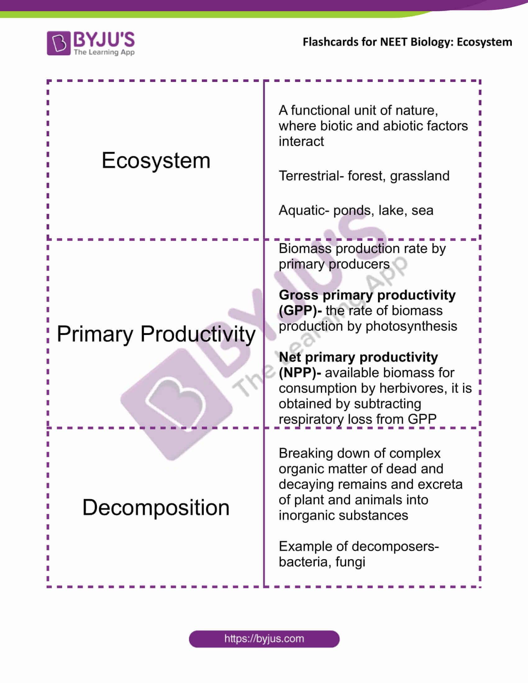 class 12 ecosystem 1