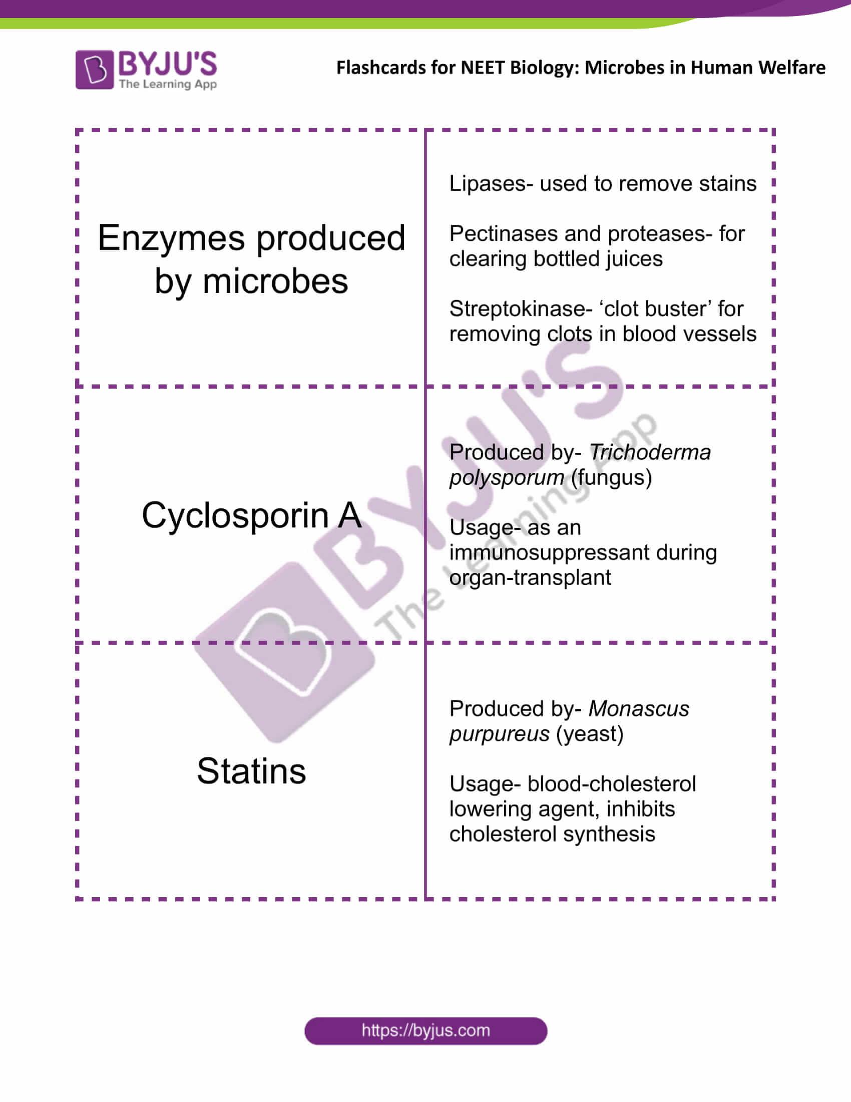 class 12 microbes in human welfare 2