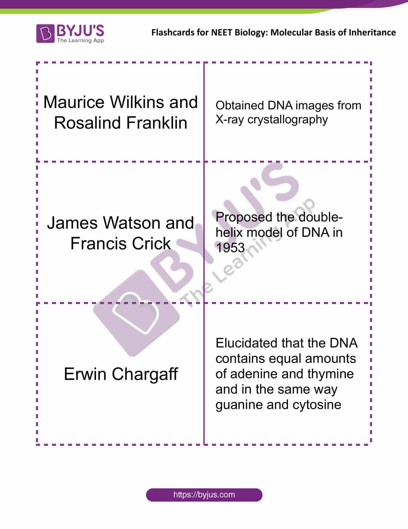 class 12 molecular basis of inheritance 03