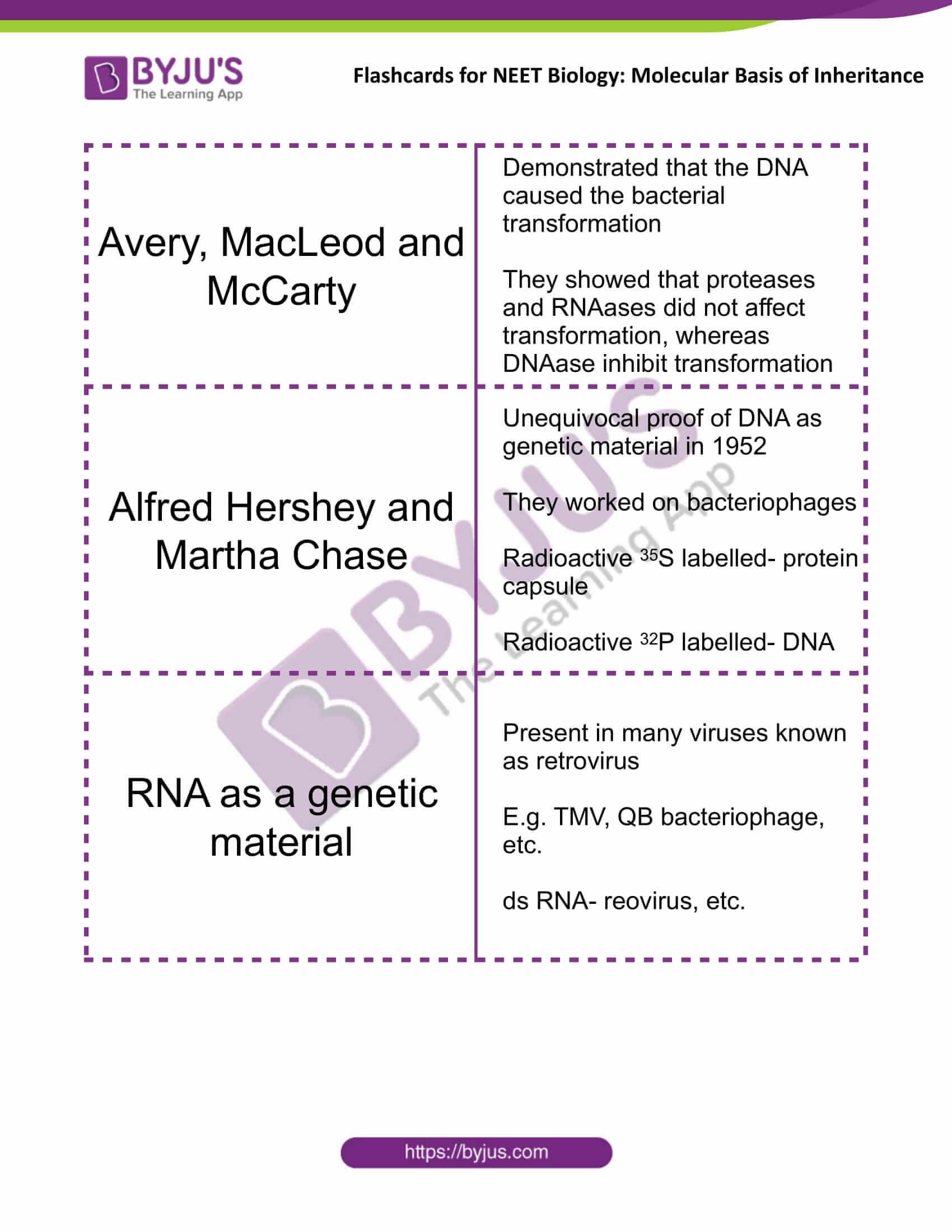 class 12 molecular basis of inheritance 07