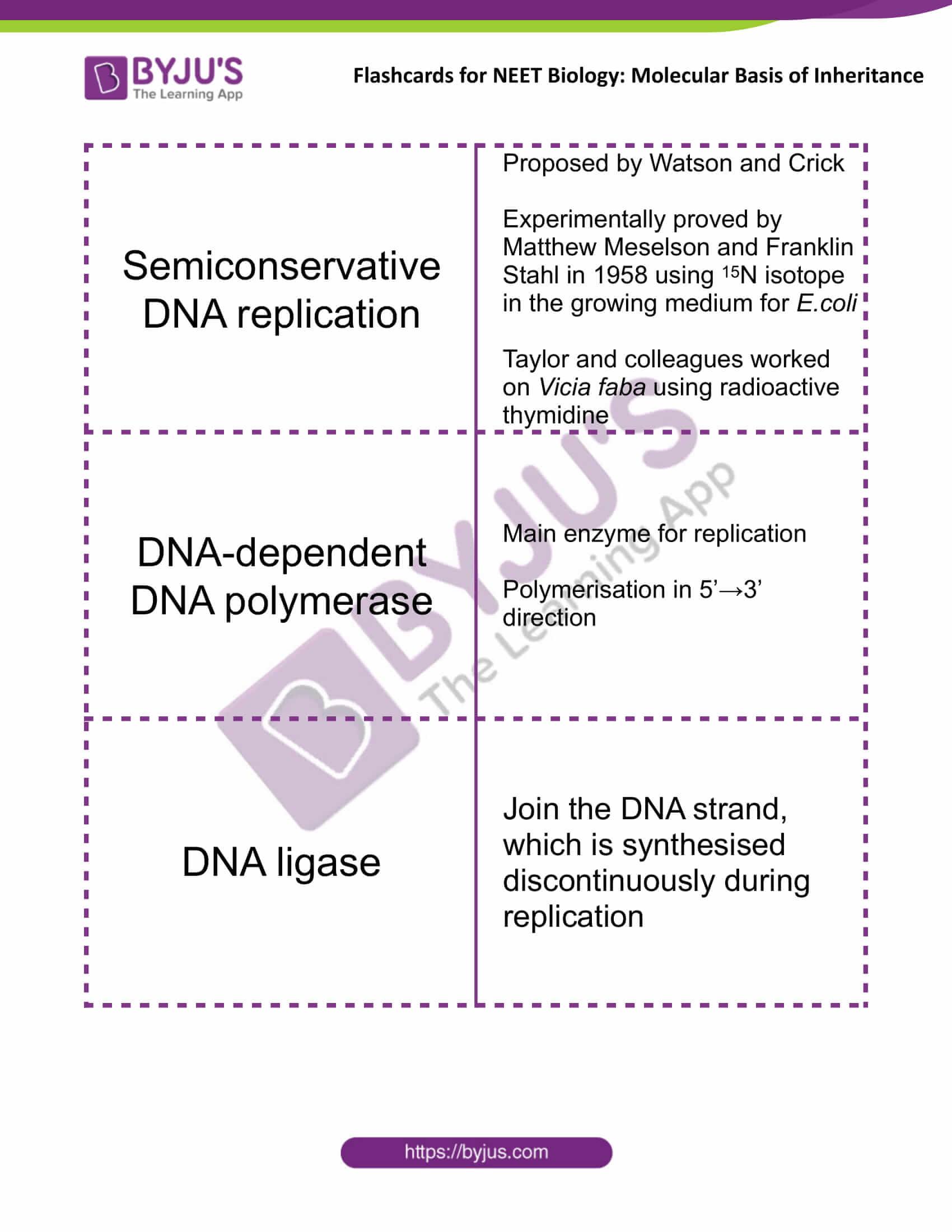 class 12 molecular basis of inheritance 08