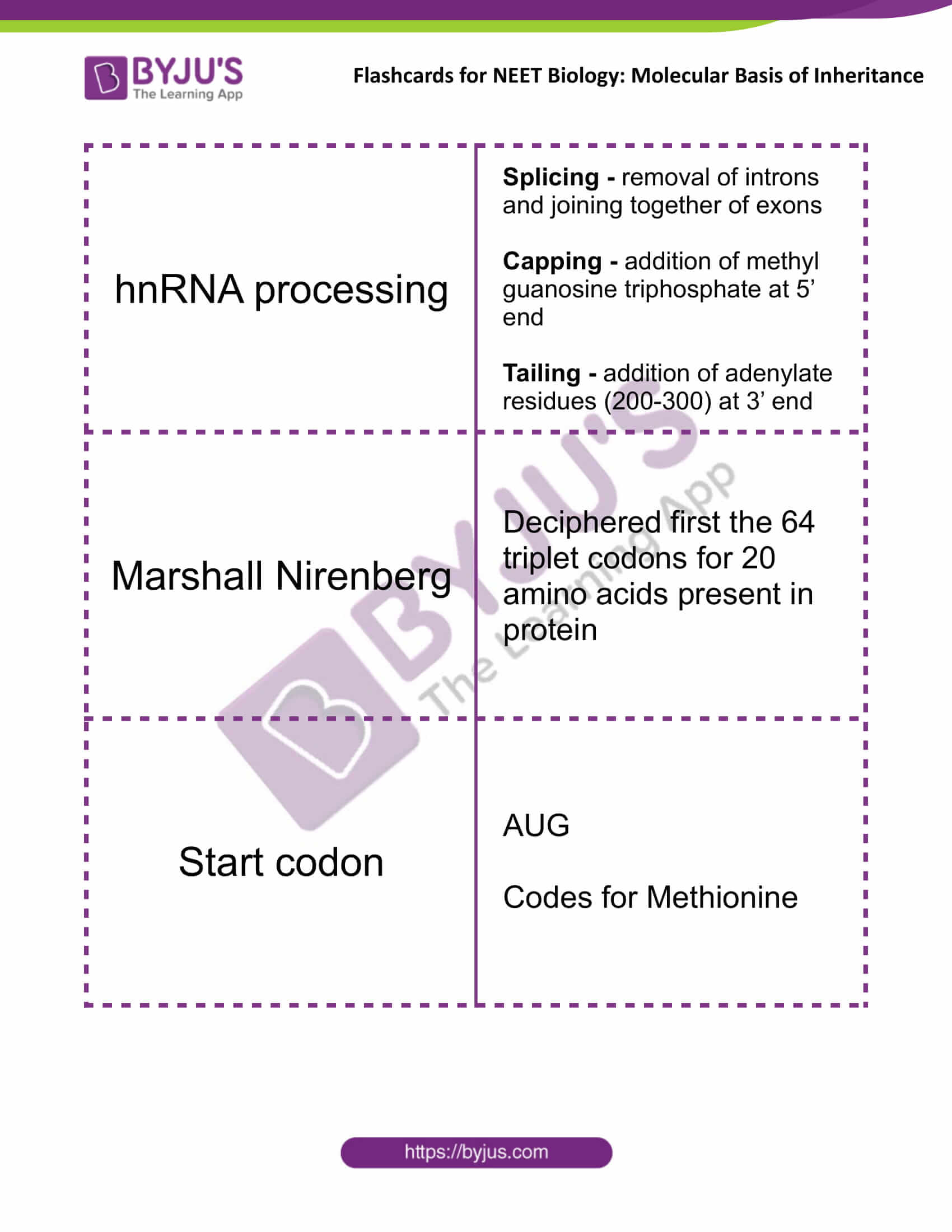 class 12 molecular basis of inheritance 12