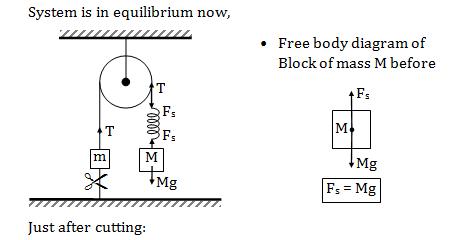 KVPY SX 2018 Solved Physics Paper 6