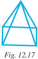 NCERT Exemplar Class 7 Maths Solutions Chapter 12 Image 7