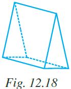 NCERT Exemplar Class 7 Maths Solutions Chapter 12 Image 8