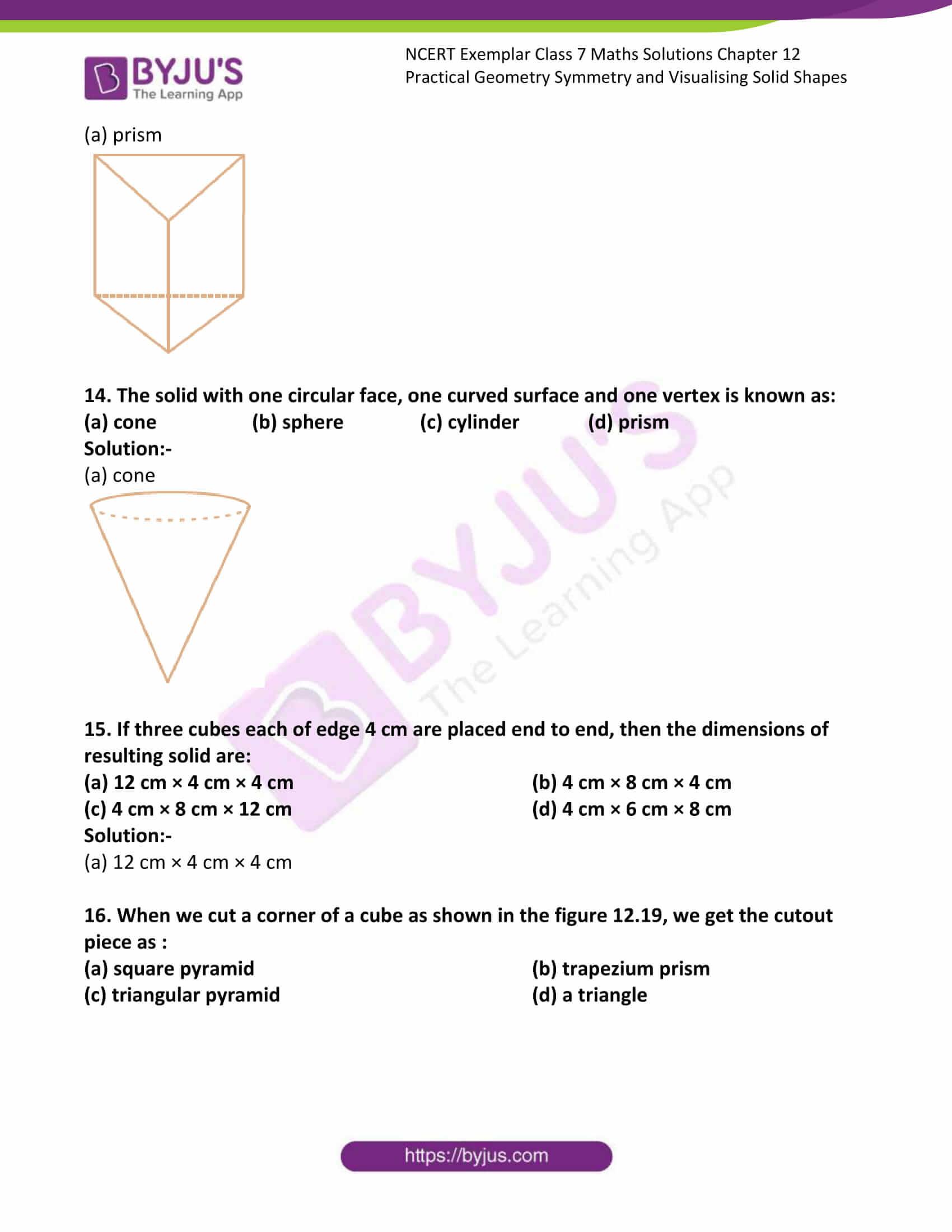 ncert exemplar class 7 maths solutions chapter 12 06