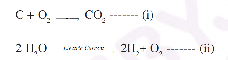 Rajasthan Board Class 10 Science 2019 Question Paper Part B Question 17